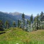 Geiselwind und Österreich 2011 075